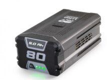 Akku 5.0Ah zu Spillwinde Portable Winch PCW 3000 LI